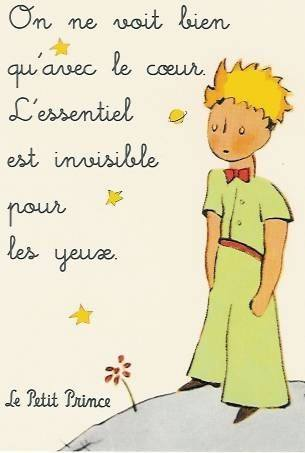 cele-mai-frumoase-citate-din-literatura-franceza1