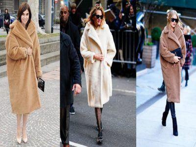 paltonul